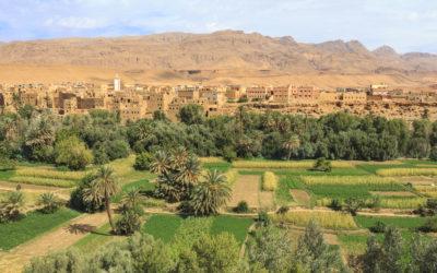 Sensibilisation à la gestion des crises dans l'agro-industrie au Maroc